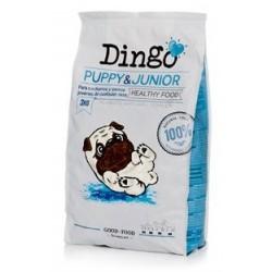 DINGO PUPPY & JUNIOR (15kg)